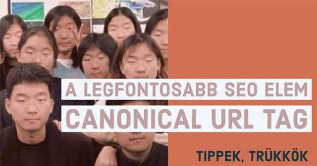 Canonical Tag thumbnail